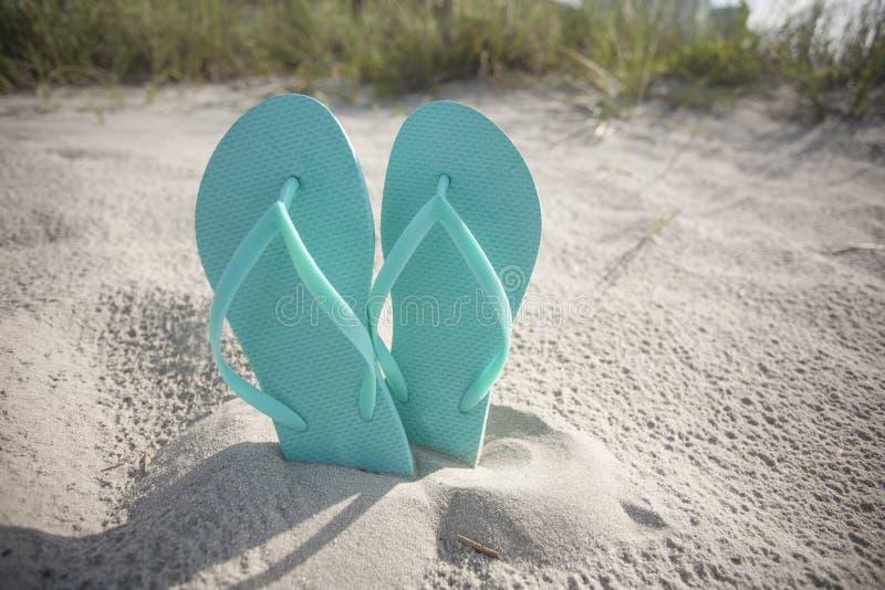 Flip Flop Sandals i sanden på stranden royaltyfri foto