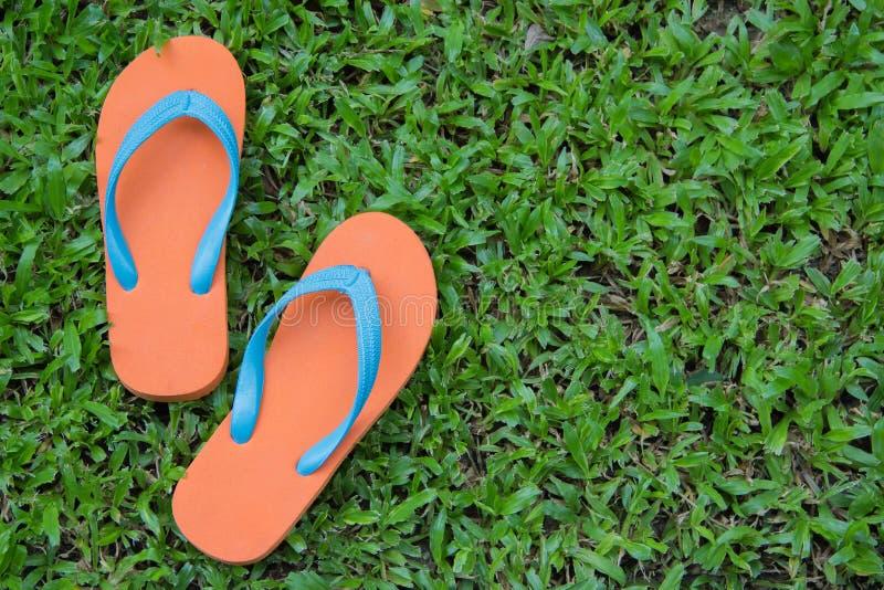 Flip Flops fotografering för bildbyråer