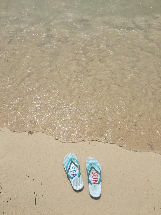 Flip Flops auf Strand in Mexiko stockbilder