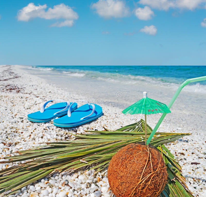 Flip flops and coconut. Coconut and flip flops under a blue sky stock image