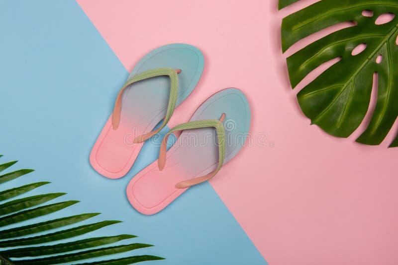 Flip-flops de praia elegante sobre fundo pastel rosa e azul com monstera e folhas de ameixa Conceito Verão com espaço de cópia imagem de stock