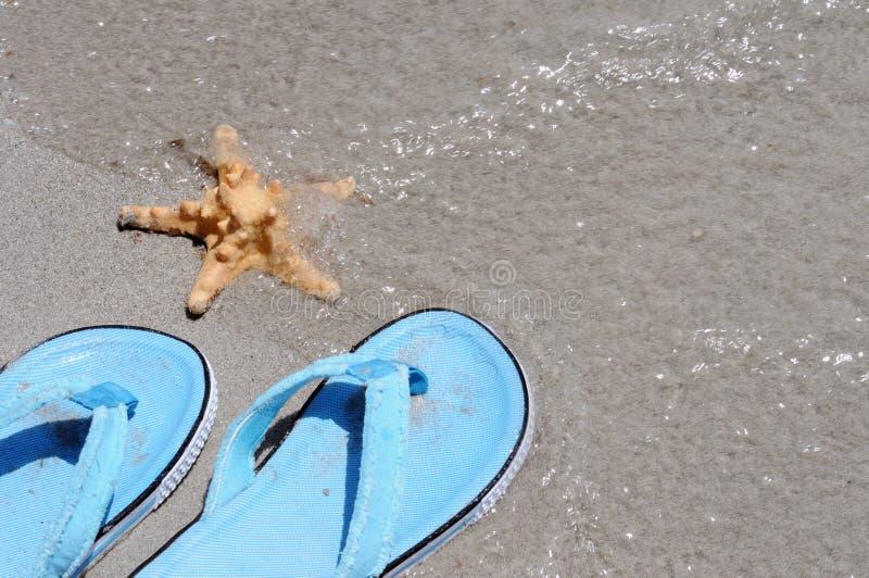 Flip-flops e peixes do mar imagem de stock royalty free