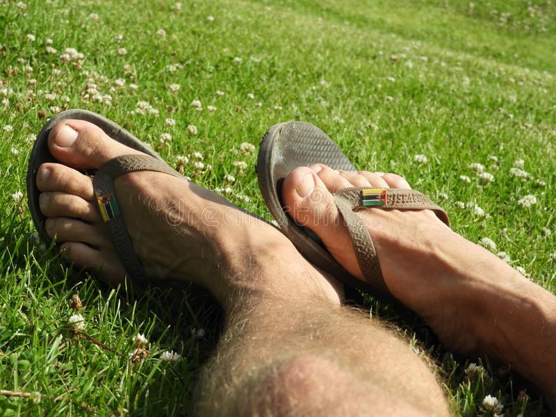 Flip flops in the sunny grass. Flip flops in the grass with bare feet royalty free stock photos