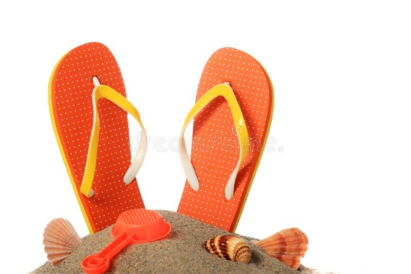 Download Flip-flops. stock photo. Image of summertime, copyspace - 31120184
