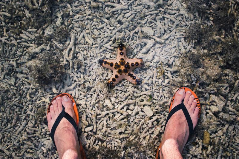 Flip-flops and Starfish. Feet wearing flip-flops standing at the gilli island beach with a starfish royalty free stock photography
