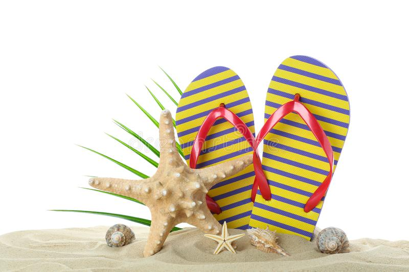Flip flops with starfish, seashells and palm leaf on clear sea sand isolated on white background. Summer stock image
