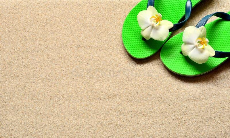 Flip Flops sur les fleurs de sable et d'orchidée Plage d'été images libres de droits