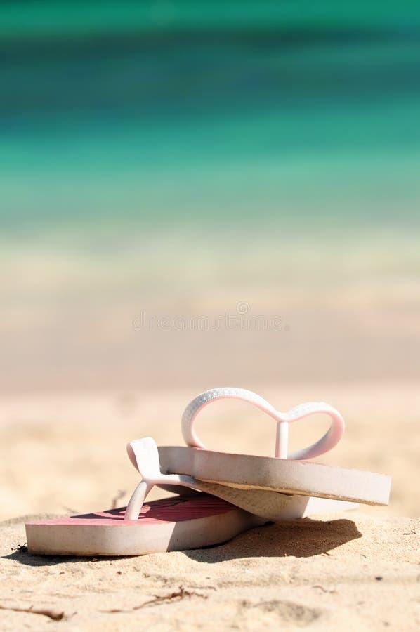Download Flipflops on a sandy beach stock photo. Image of flipflops - 4981214