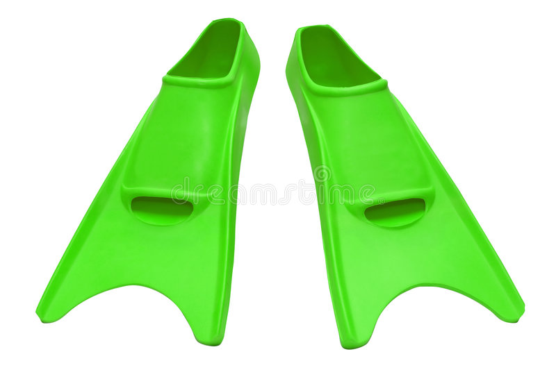 flipper green isolerat royaltyfria foton
