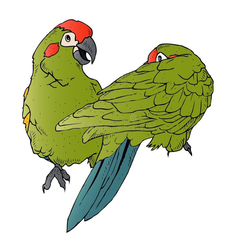 Download Flirting Parrots stock vector. Illustration of drawing - 30360841