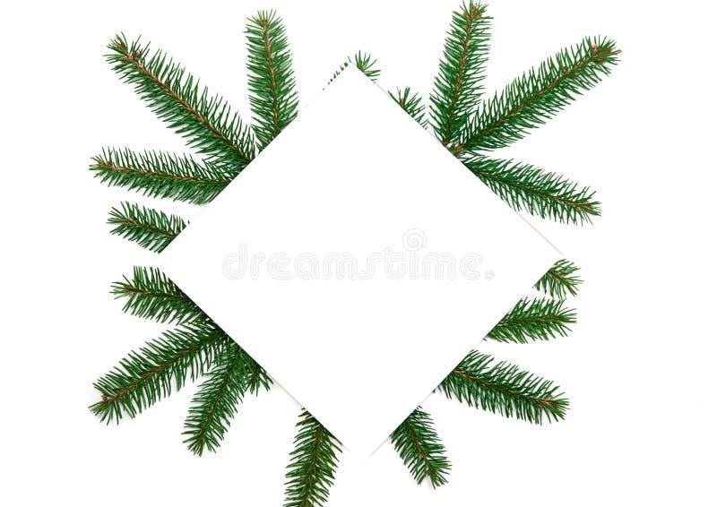 Flitter in einem blauen Glas Papierfreier raum, Weihnachtsbaumaste, gol lizenzfreies stockfoto