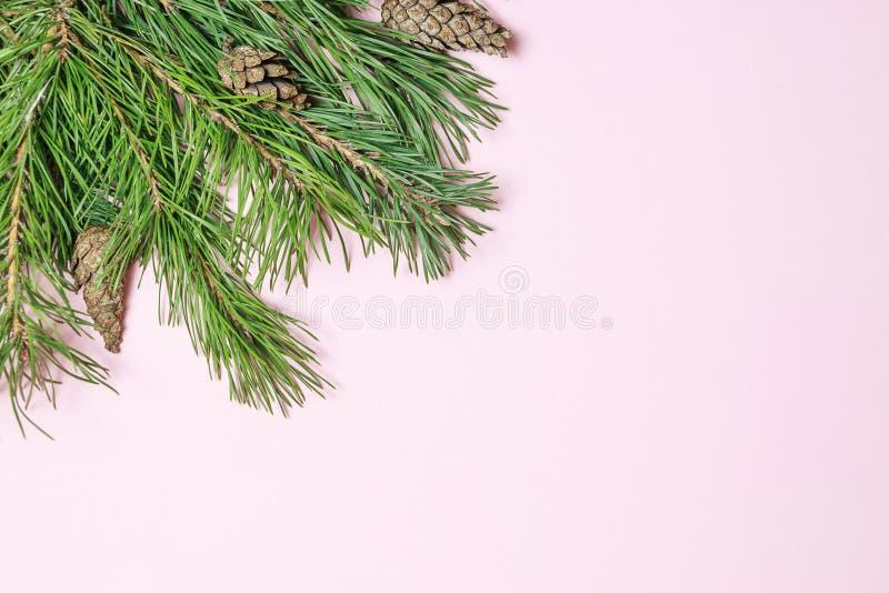 Flitter in einem blauen Glas Weihnachtsrahmen gemacht vom Nadelbaum, Tannenzweigdekorationen lizenzfreie stockbilder