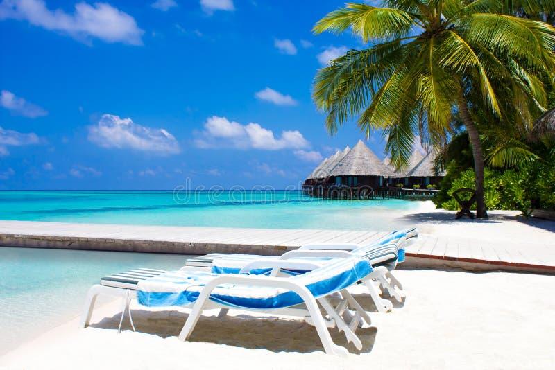 Flitterwochen in den Malediven, Eden auf Erde stockbild