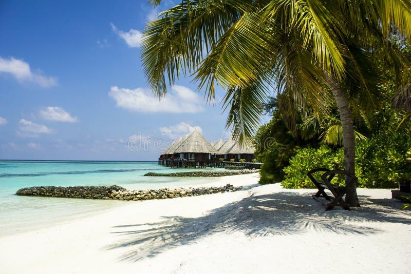 Flitterwochen in den Malediven, Eden auf Erde stockbilder