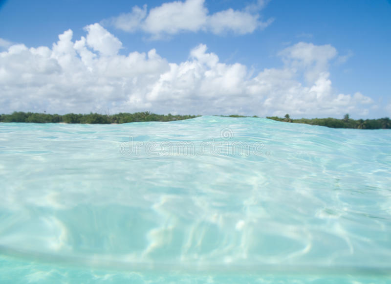 Floating in the Caribbean sea stock photography