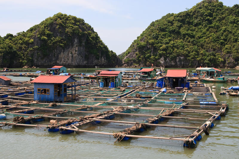 Download Floating Fishing Village stock photo. Image of long, rock - 17252140