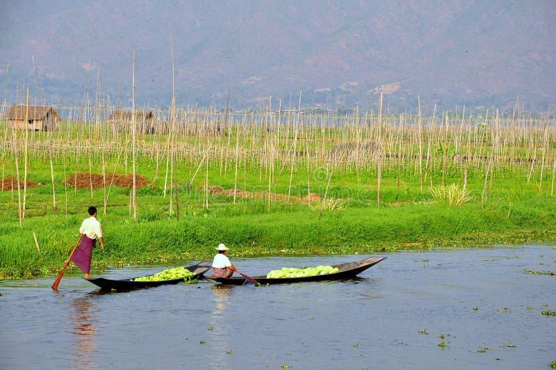 Floating garden in Myanmar royalty free stock image