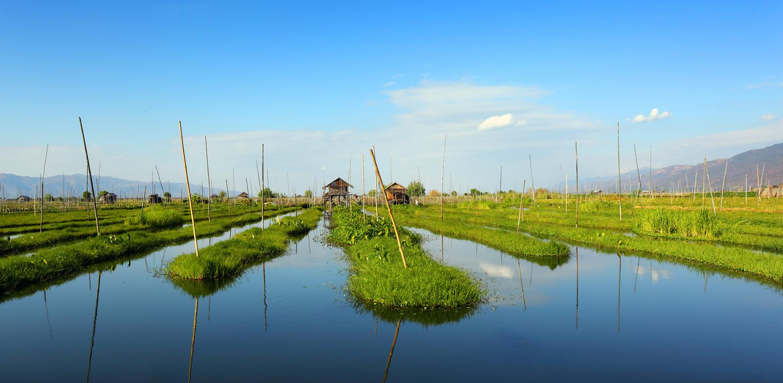 Floating gardens on Inle Lake in Myanmar royalty free stock photo