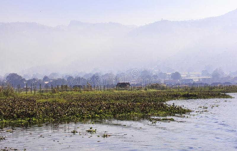 Floating Gardens of Inle Lake. This photo was taken Inle Lake. Most gardens are rooted in soil, the seeds sown within plots of dirt firmly attached to the earth royalty free stock photography