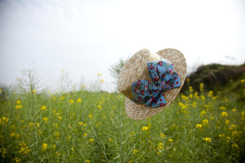 Download Floating Hat In Flower Field Stock Photo - Image: 24301580