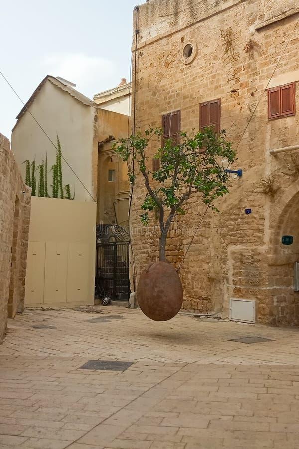 Free Floating Orange Tree By Ran Morin In Tel Aviv, Israel Royalty Free Stock Photo - 186894485
