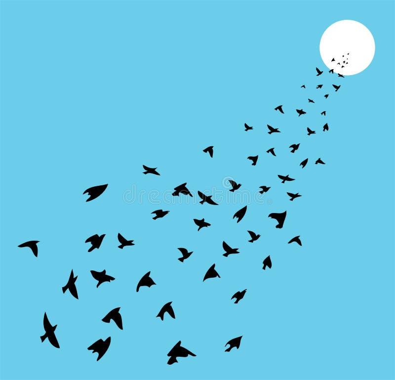 Flock av att flyga för fåglar royaltyfri illustrationer