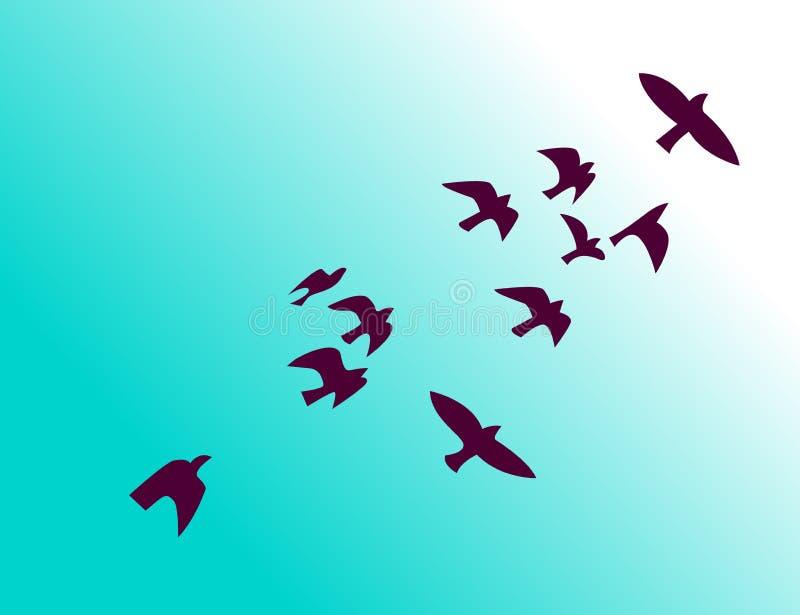 Flock of birds flying in sky vector illustration