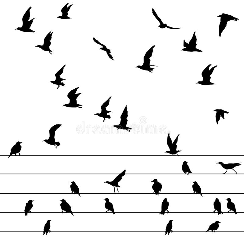 Flock of birds sitting on wires and flying stock illustration