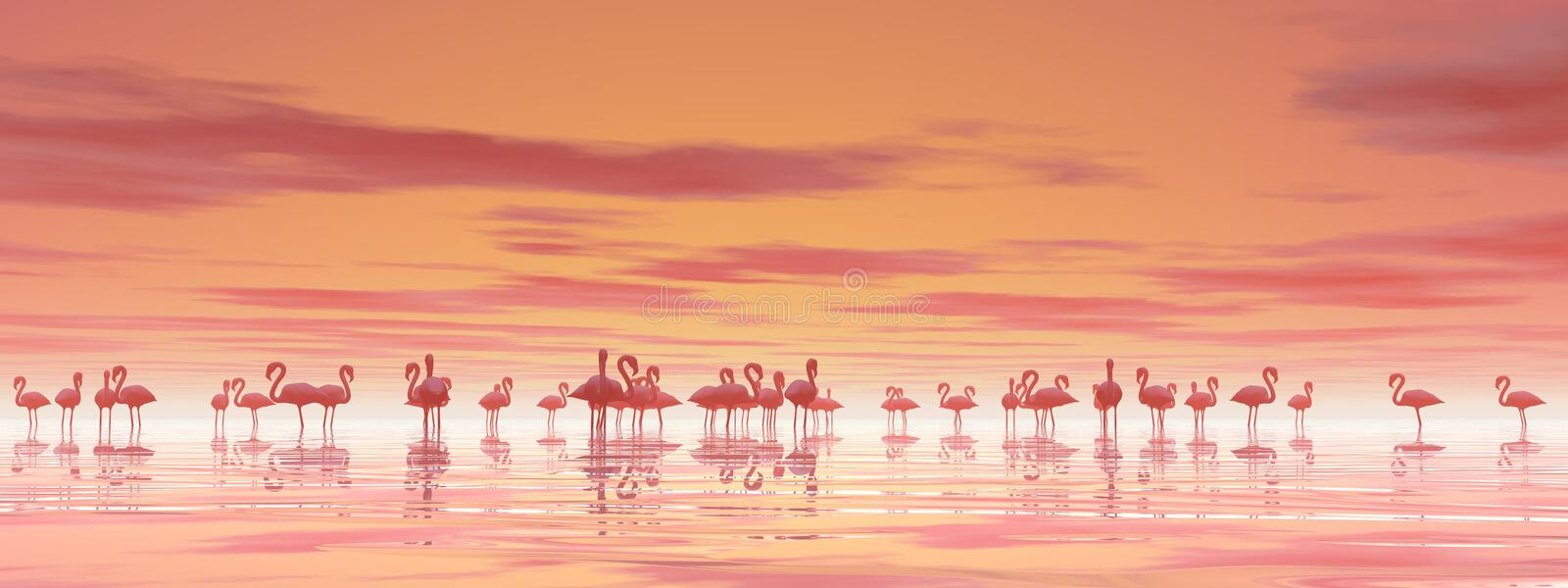 Flock of flamingos - 3D render. Flock of flamingos standing peacefully in the water by cloudy sunset vector illustration