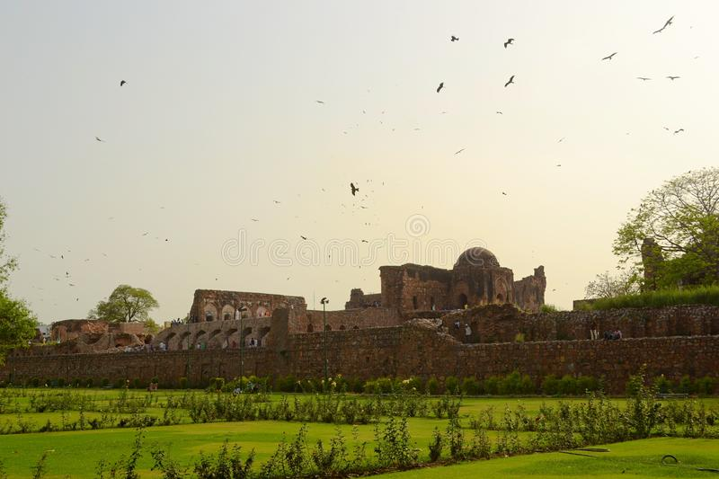 A flock of flyinh birds above the Pillars of Ashoka. Complex in Delhi. Rose garden green fields on a foreground. India stock photo