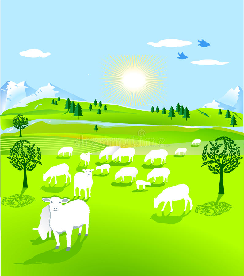 Flock of sheep. Sheep out to pasture vector illustration