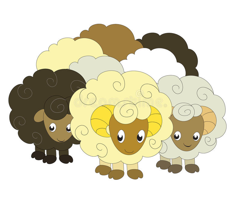 A flock of sheep. A illustration of a flock of funny cartoon sheep vector illustration