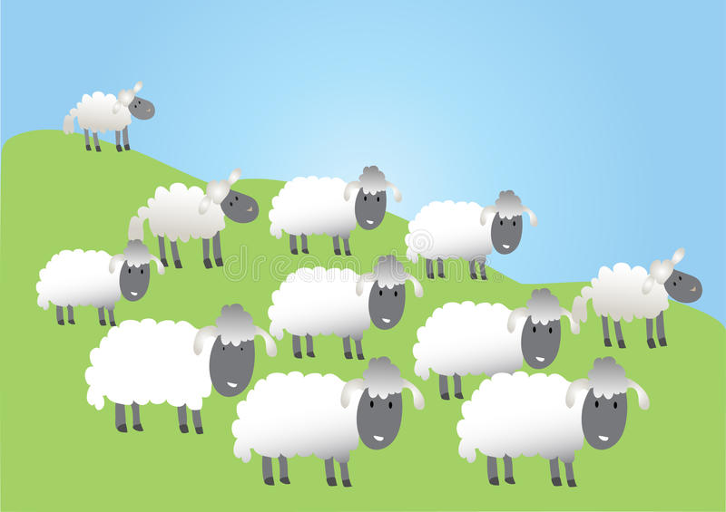 A flock of sheep. A cartoon flock of very woolly sheep royalty free illustration