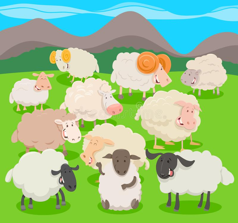 Flock of sheep characters cartoon illustration. Cartoon Vector Illustration of Flock of Sheep Farm Animal Characters royalty free illustration