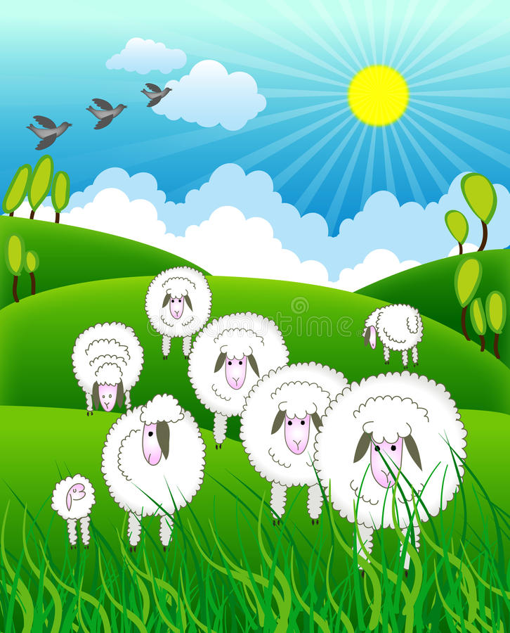 Flock of sheep in farm. At sunset is created in illustrator vector illustration
