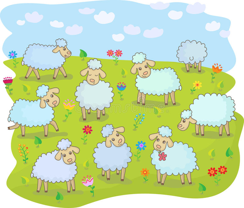 Flock of sheep. A flock of sheep in the pasture stock illustration