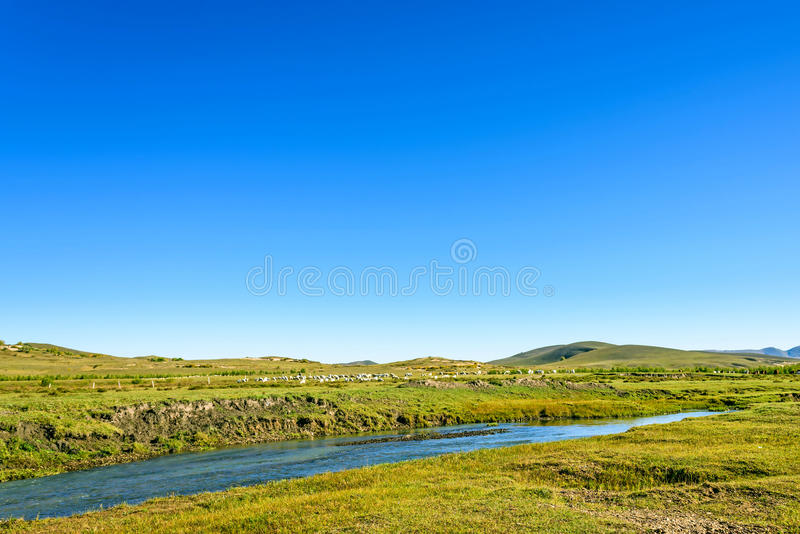 A flock of sheep on The vast grassland and stream stock photography