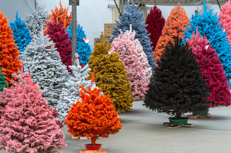 Flocked Christmas Trees stock image. Image of small, pink ...