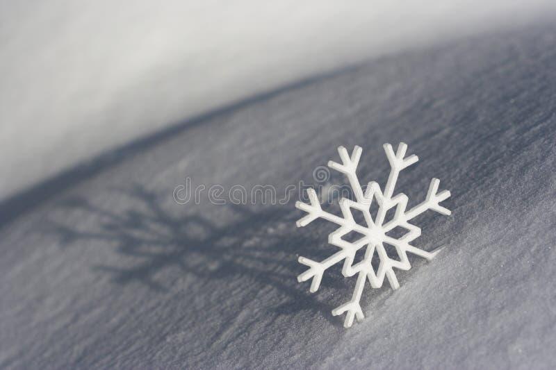 Download Floco de neve imagem de stock. Imagem de cartão, neve - 12802641