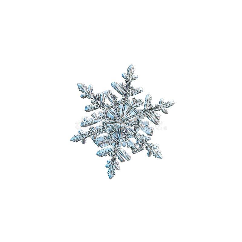 Floco de neve isolado no fundo branco imagens de stock