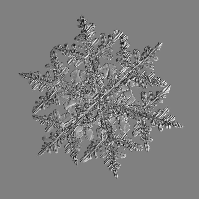 Floco de neve isolado no fundo cinzento uniforme imagens de stock royalty free