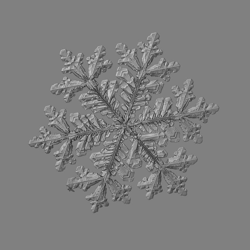 Floco de neve isolado no fundo cinzento uniforme imagem de stock