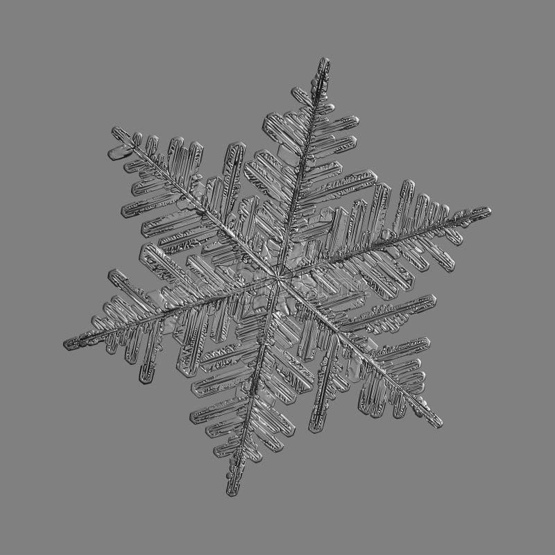 Floco de neve isolado no fundo cinzento uniforme fotos de stock