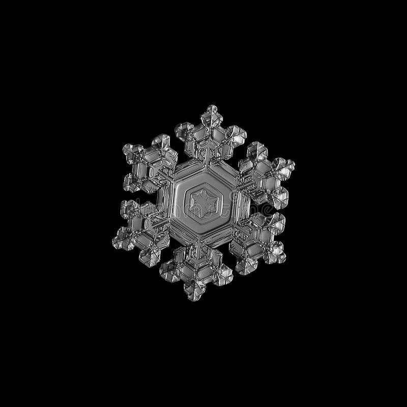 Floco de neve isolado no fundo preto imagem de stock