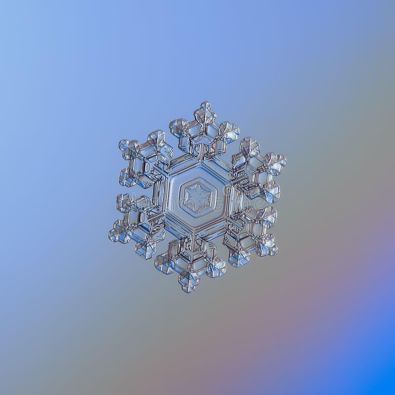 Floco de neve que brilha no fundo liso do inclinação fotografia de stock