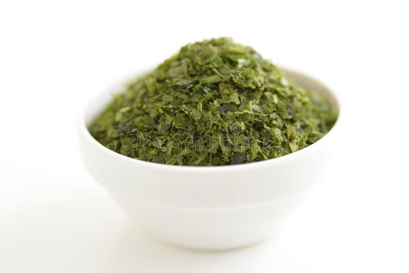Floco verde da alga imagem de stock