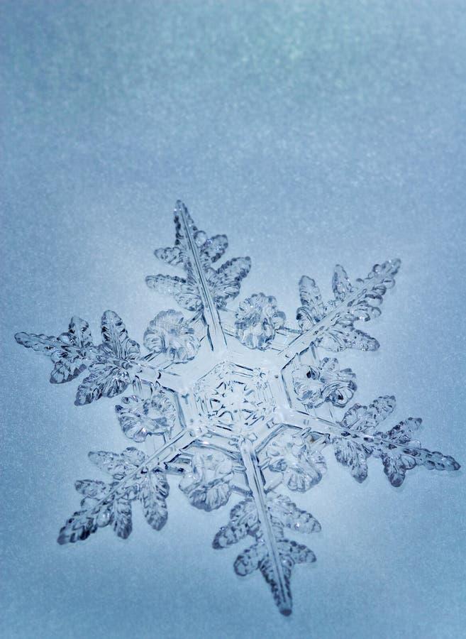 Flocon de neige bleu de son photographie stock