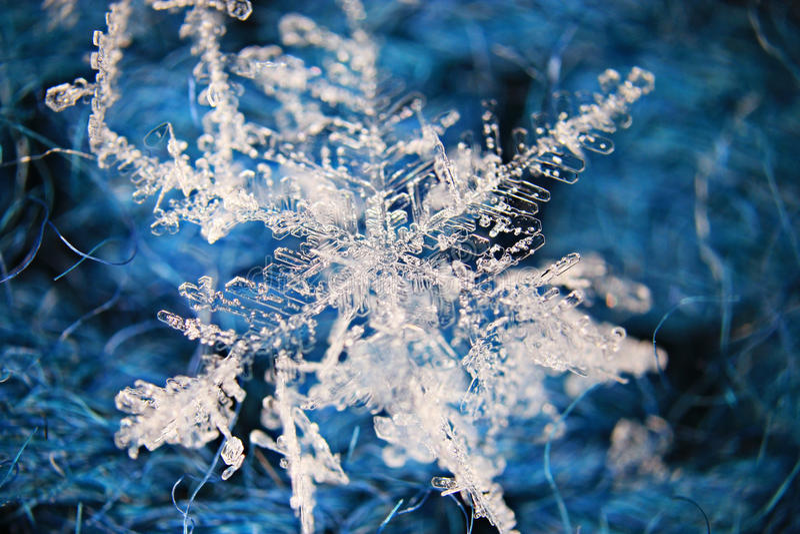 Flocon de neige naturel image stock