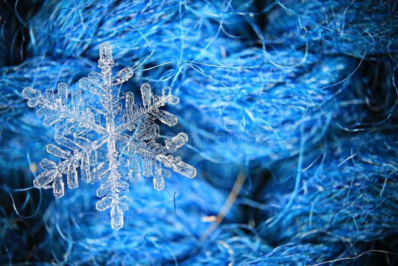 Flocon de neige sur le fond bleu image stock