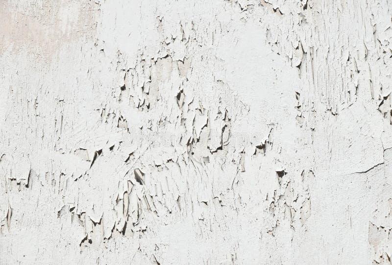 Download Flocons De Vintage De Vieille Peinture Blanche Au Dessus De Mur En  Béton Gris